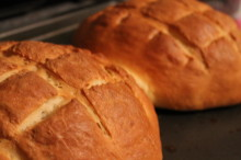 Sour Cream Quick Boule